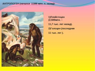 АНТРОПОГЕН (начался 2,588 млн. л. назад): 1)Плейстоцен (2,588млн. – 11,7 тыс.