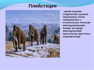 Плейстоцен - время великих оледенений, суровые ледниковые эпохи чередовались