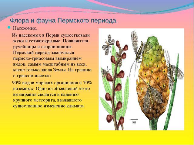 Флора и фауна Пермского периода. Насекомые. Из насекомых в Перми существовали...