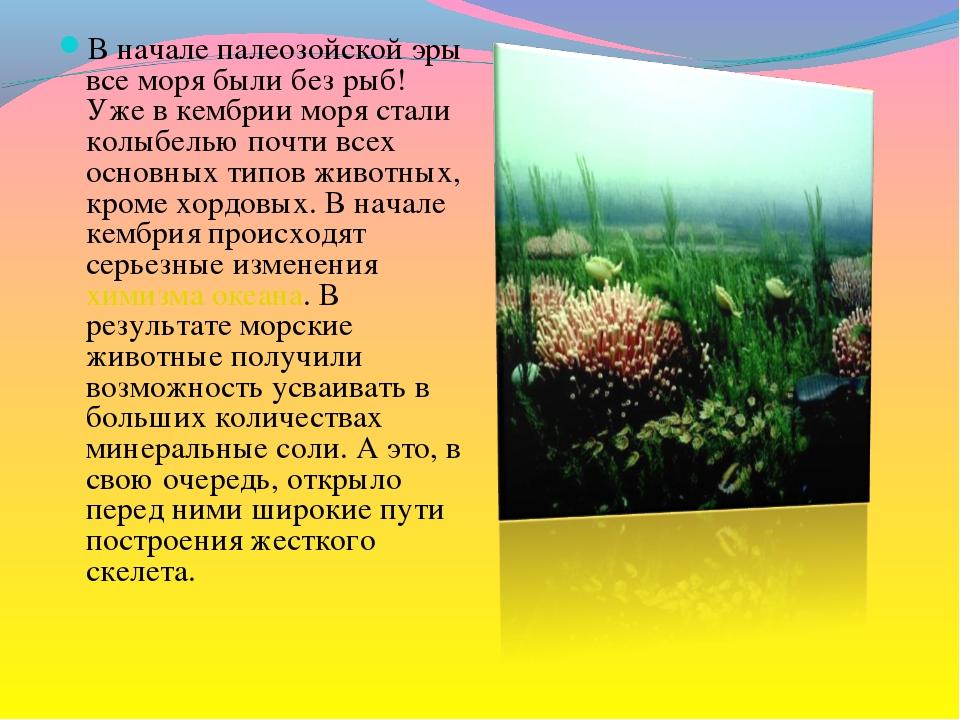 В начале палеозойской эры все моря были без рыб! Уже в кембрии моря стали кол...