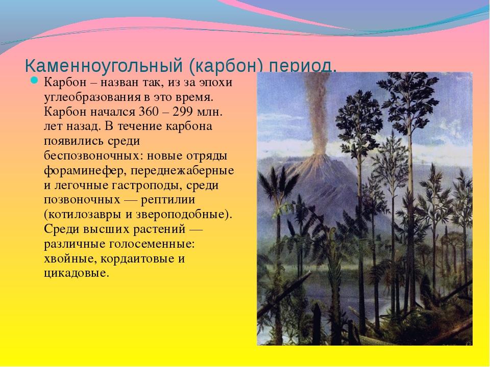 Каменноугольный (карбон) период. Карбон – назван так, из за эпохи углеобразов...