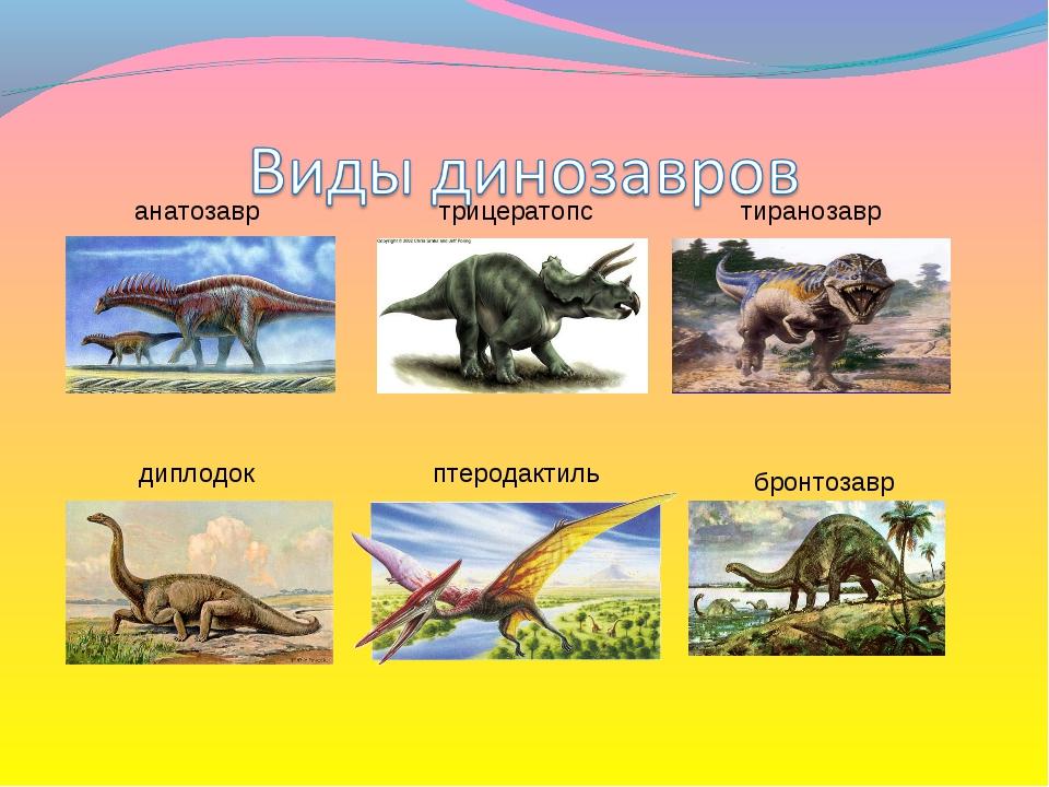 анатозавр трицератопс тиранозавр диплодок птеродактиль бронтозавр