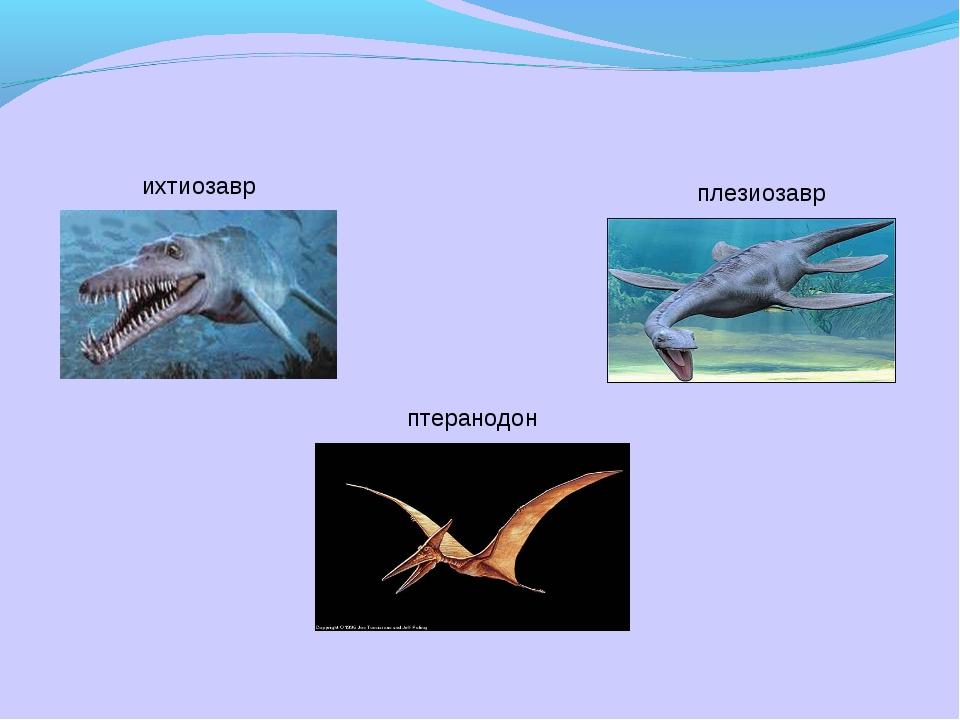 ихтиозавр плезиозавр птеранодон
