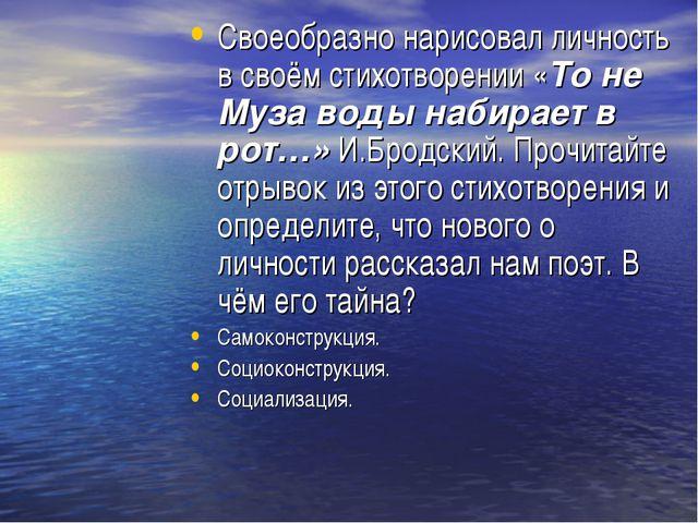Своеобразно нарисовал личность в своём стихотворении «То не Муза воды набирае...