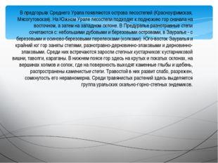 В предгорьях Среднего Урала появляются острова лесостепей (Красноуфимская, Мя