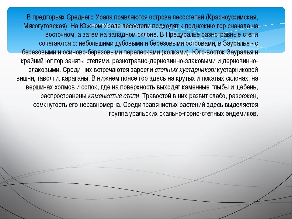 В предгорьях Среднего Урала появляются острова лесостепей (Красноуфимская, Мя...