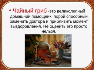 Чайный гриб -это великолепный домашний помощник, порой способный заменить док