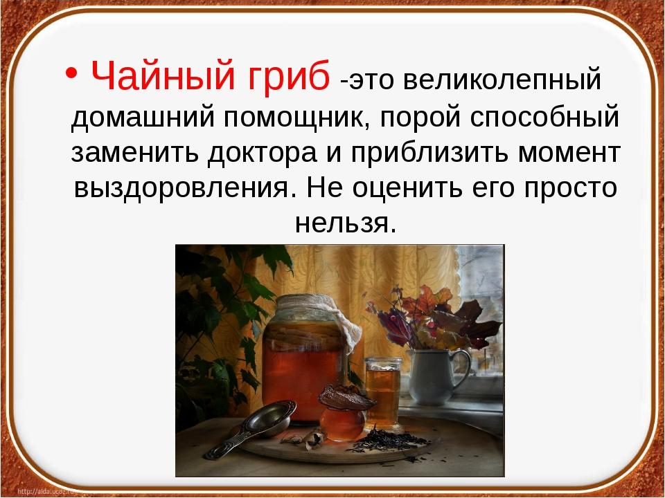 Чайный гриб -это великолепный домашний помощник, порой способный заменить док...