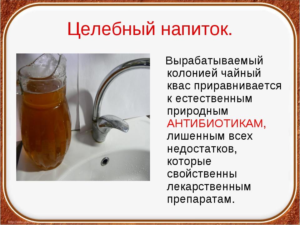 Целебный напиток. Вырабатываемый колонией чайный квас приравнивается к естест...