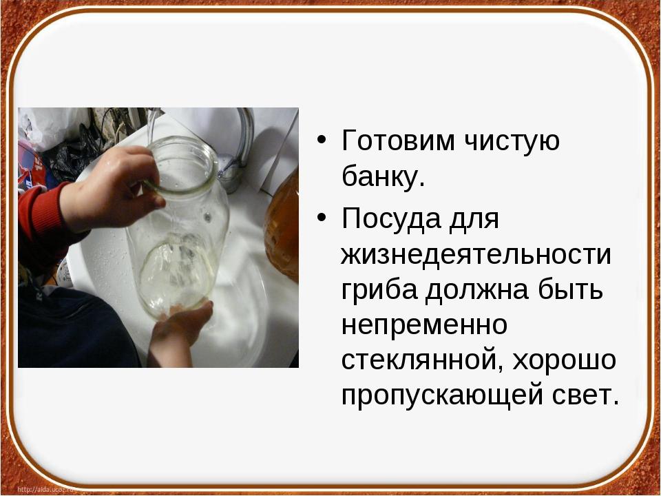 Готовим чистую банку. Посуда для жизнедеятельности гриба должна быть непремен...