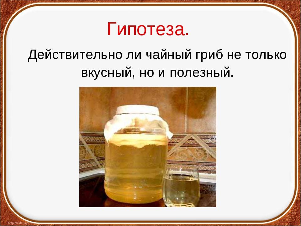 Гипотеза. Действительно ли чайный гриб не только вкусный, но и полезный.