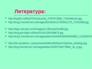 Литература: http://inpath.ru/files/Photos/cache_2787873586_715036612d.jpg htt