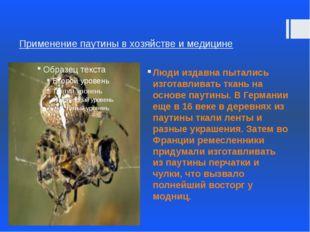 Применение паутины в хозяйстве и медицине Люди издавна пытались изготавливать