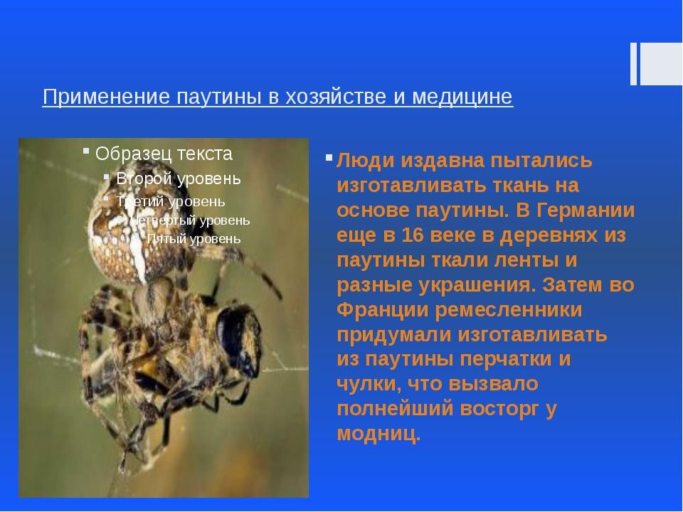 Применение паутины в хозяйстве и медицине Люди издавна пытались изготавливать...