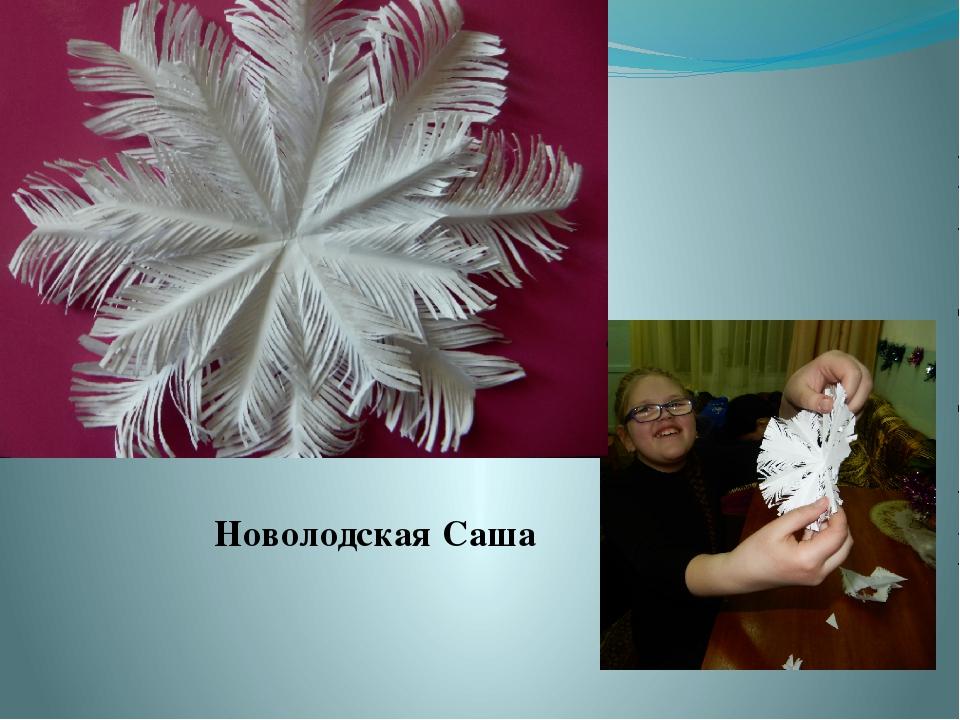 Новолодская Саша
