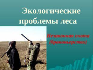 Экологические проблемы леса Незаконная охота (браконьерство)