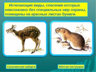 Исчезающие виды, спасение которых невозможно без специальных мер охраны, пом