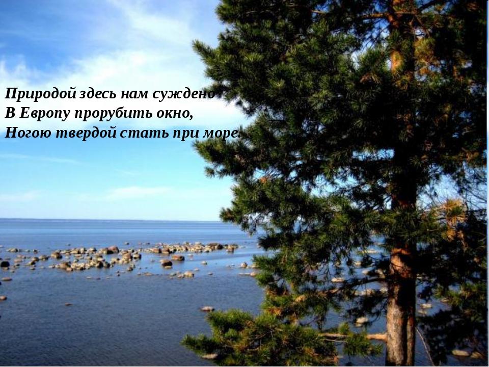 Природой здесь нам суждено В Европу прорубить окно, Ногою твердой стать при м...