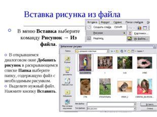 Вставка рисунка из файла В меню Вставка выберите команду Рисунок → Из файла.