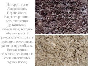На территории Лысковского, Перевозского, Вадского районов есть отложения дол