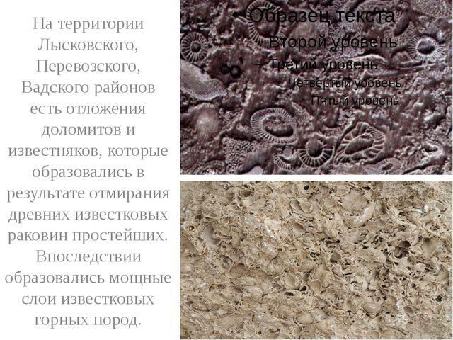 На территории Лысковского, Перевозского, Вадского районов есть отложения дол...