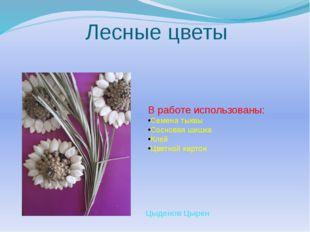 Лесные цветы В работе использованы: Семена тыквы Сосновая шишка Клей Цветной