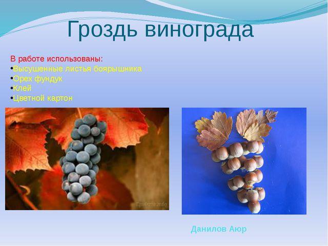 Гроздь винограда В работе использованы: Высушенные листья боярышника Орех фун...