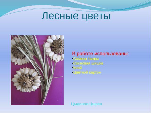 Лесные цветы В работе использованы: Семена тыквы Сосновая шишка Клей Цветной...