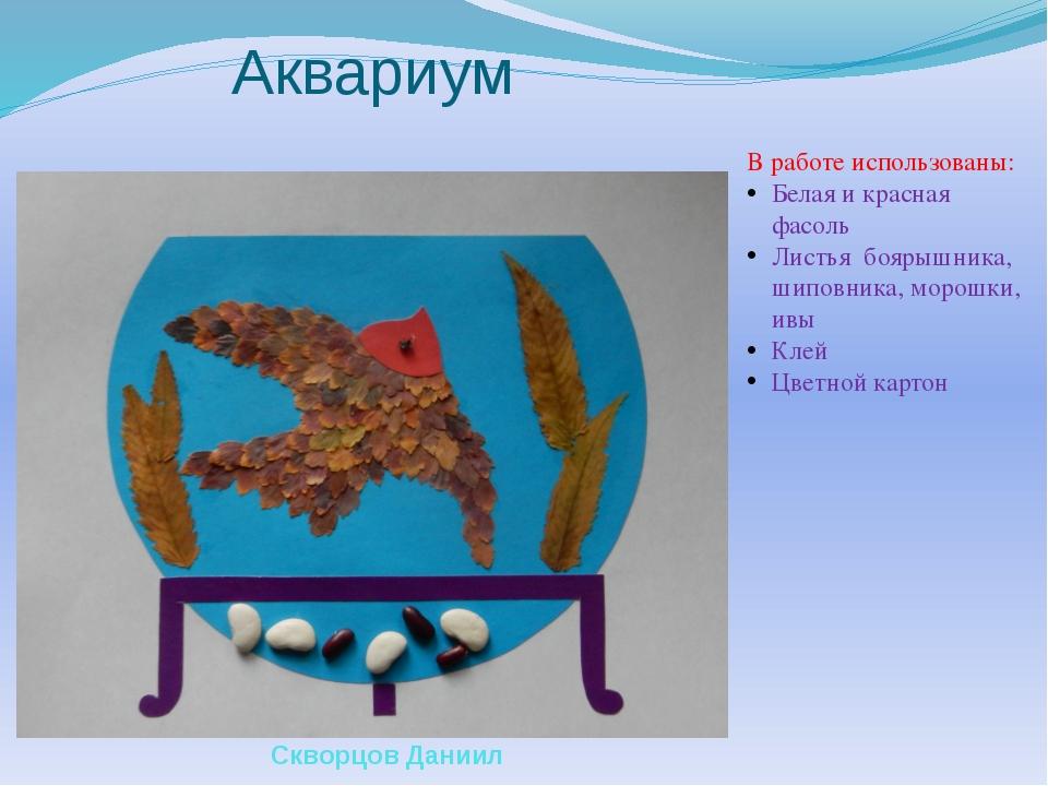 Аквариум В работе использованы: Белая и красная фасоль Листья боярышника, шип...