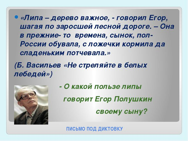 ПИСЬМО ПОД ДИКТОВКУ «Липа – дерево важное, - говорил Егор, шагая по заросшей...
