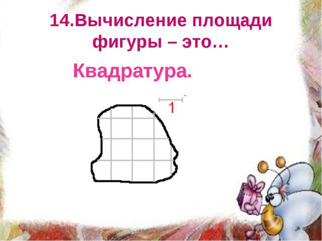 14.Вычисление площади фигуры – это… Квадратура.