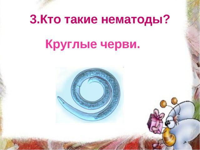 3.Кто такие нематоды? Круглые черви.