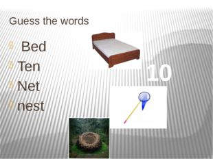 Guess the words Bed Ten Net nest 10