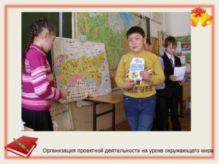 Организация проектной деятельности на уроке окружающего мира