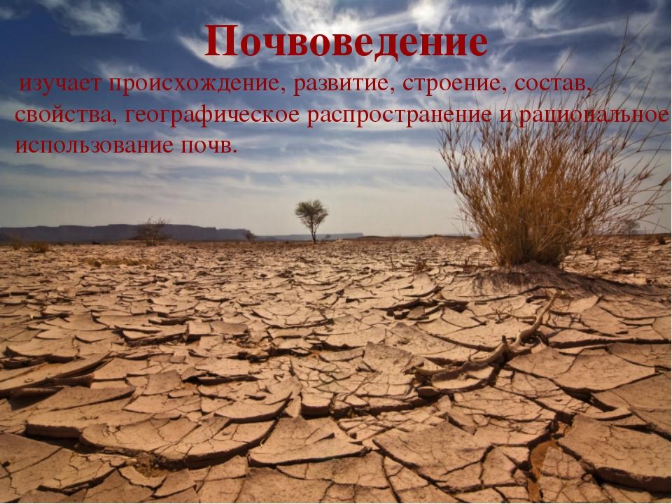 Почвоведение изучает происхождение, развитие, строение, состав, свойства, ге...