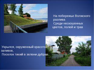 На побережье Волжского разлива Среди нескошенных цветов, полей и трав Укрылс