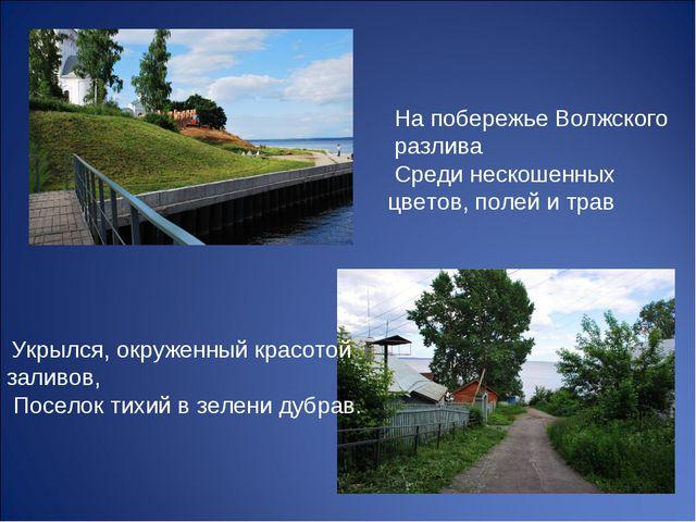 На побережье Волжского разлива Среди нескошенных цветов, полей и трав Укрылс...