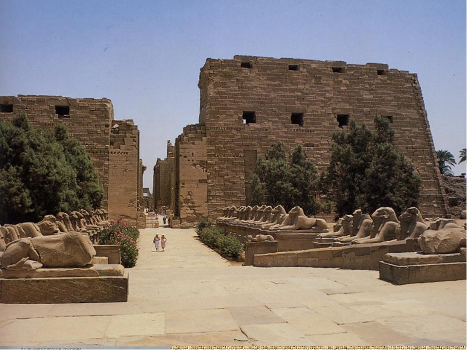 капители папирусо- лотосо- Колонна – высокий столб для опоры здания.