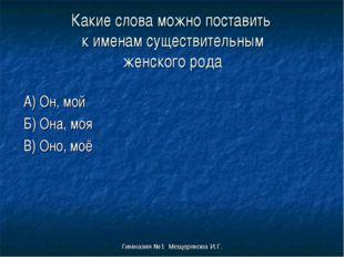 Гимназия №1 Мещерякова И.Г. Какие слова можно поставить к именам существитель
