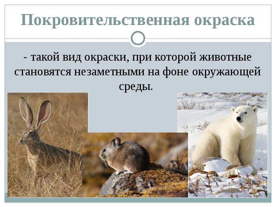 Покровительственная окраска - такой вид окраски, при которой животные становя...