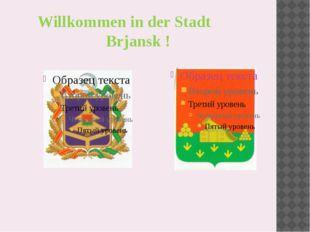 Willkommen in der Stadt Brjansk !