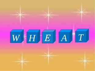 W H T A