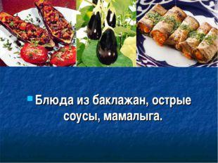 Блюда из баклажан, острые соусы, мамалыга.