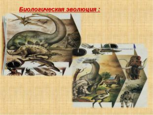 Биологическая эволюция :