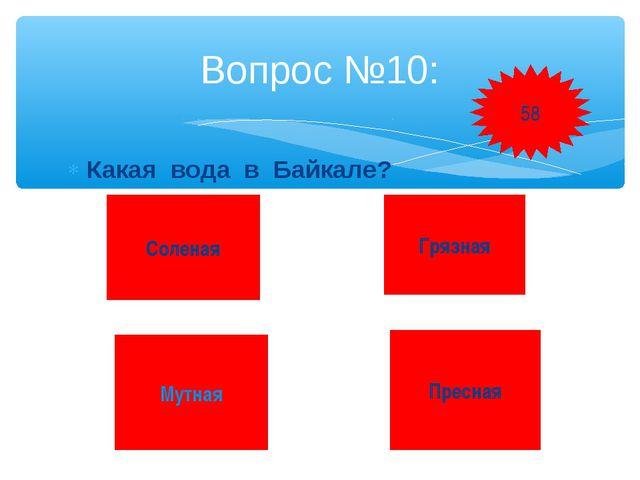 Какая вода в Байкале? Вопрос №10: Соленая Грязная Мутная Пресная 58