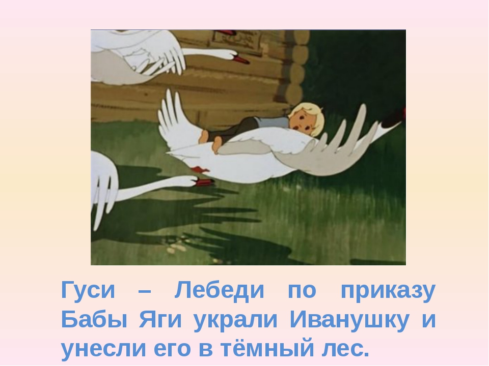 Гуси – Лебеди по приказу Бабы Яги украли Иванушку и унесли его в тёмный лес.