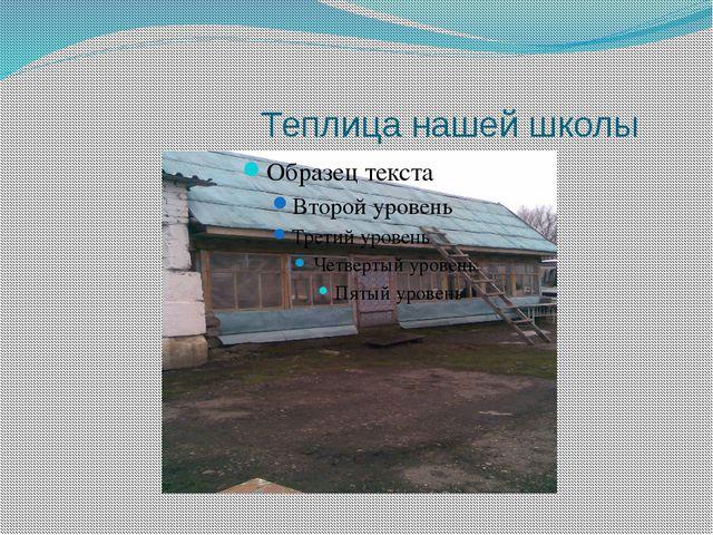 Теплица нашей школы