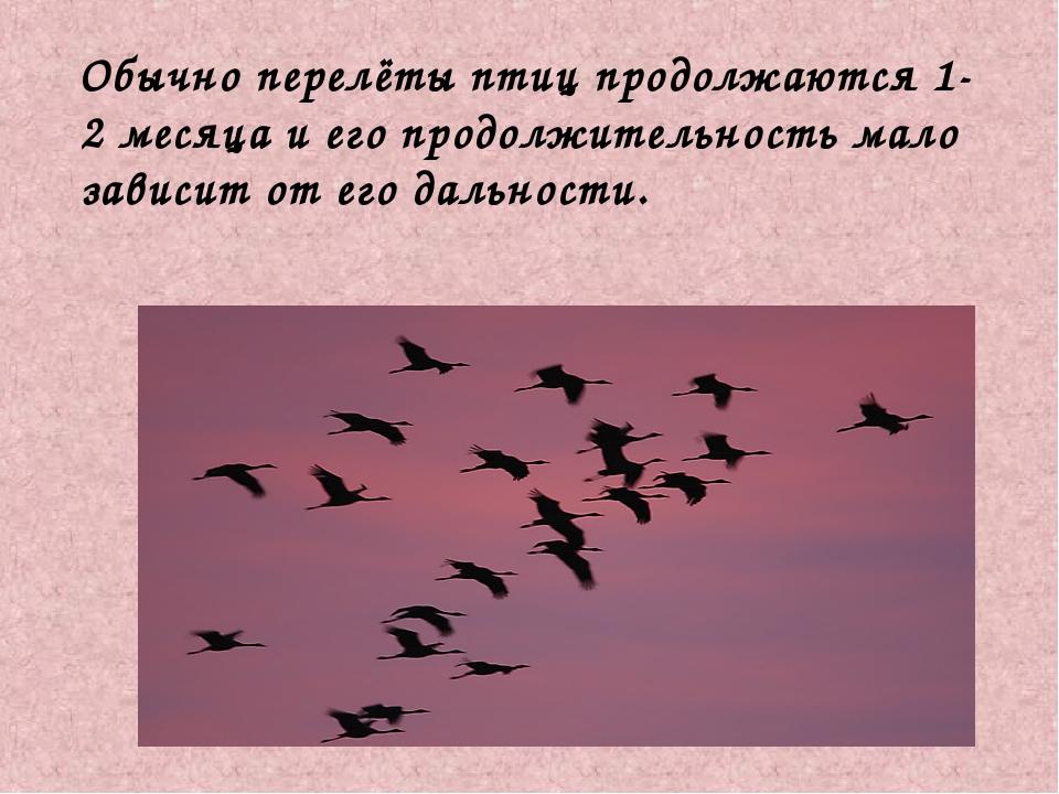 Обычно перелёты птиц продолжаются 1-2 месяца и его продолжительность мало за...