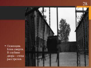 Освенцим. Блок смерти. В глубине двора - стена расстрелов. *