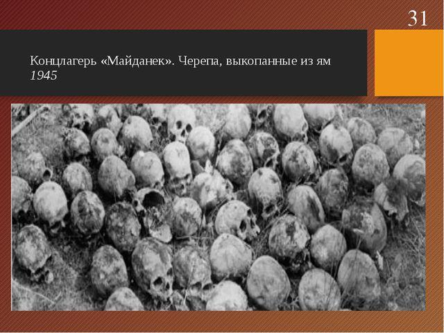 Концлагерь «Майданек». Черепа, выкопанные из ям 1945 *